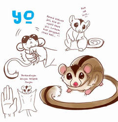 CR Pet : Yo by Bayou-Kun
