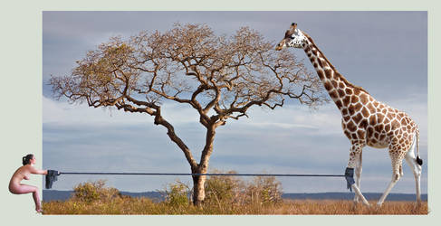 How to pull a giraffe by FireFlyExposed