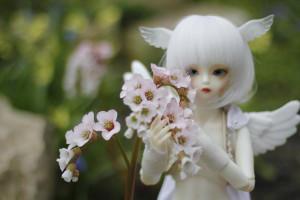 Kuroi-Sora's Profile Picture