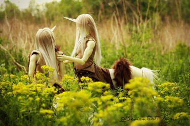 Soom Centaurs - Brother, can I help you? by Kuroi-Sora
