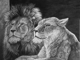 King and queen by Dom579