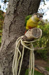 Tiny Bird with a Rope by shinigamisgem