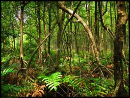 Many-Legged Trees by kuma-x