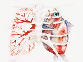 Lungs by ruN-aliaN