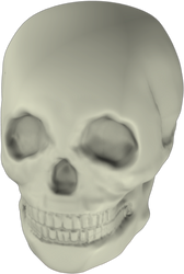 Skull v 0.5 by Tatored23