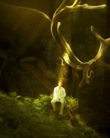 kth - forest by llyaas