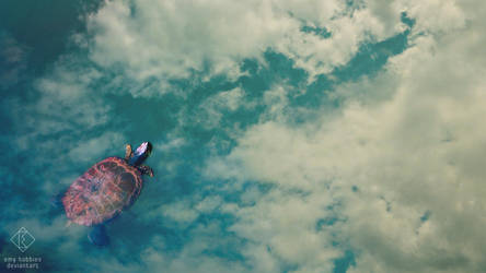 Swimming in the sky by emy-hobbies