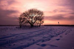 Winter Landscape by CPhoenix33