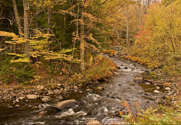 Fall New Hampshire Stream by ljbeau
