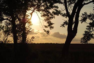 sunset2 by UntoteDrecksau
