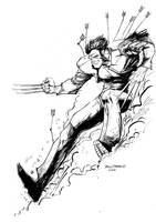 Wolverine by pfab