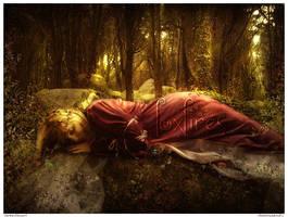 Sleeping Beauty by Foxfires