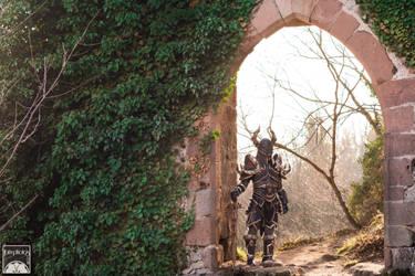 Black Knight - the Arch by BlackOwlStudio
