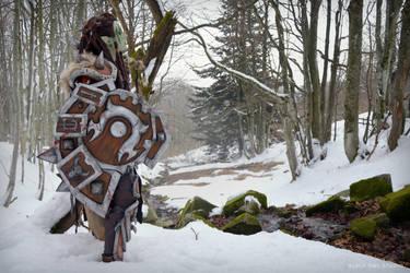 Warsong Commander: Winter Photoshoot 04 by BlackOwlStudio