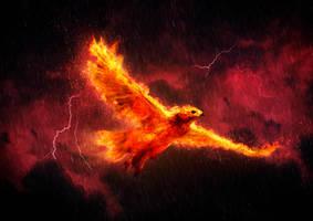 Phoenix Storm by SitrusJo