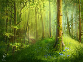 Forest study by Kaeriya