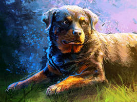Lady Blue Rottweiler by FleetingEmber