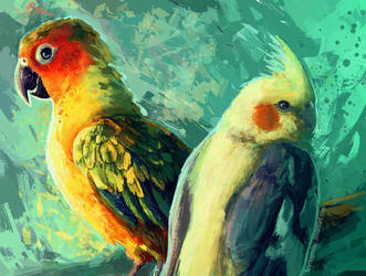 Conure and Cockatiel by FleetingEmber