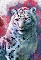 Snow Leopard by FleetingEmber
