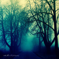 ..: if these trees could talk :.. by Moth-called-Marigold