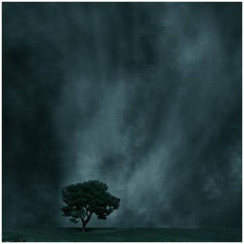 un arbol en la tormenta by virtud