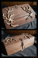 Wood and Roots by bug-in-my-eye
