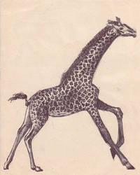 Giraffe by DancingDreams