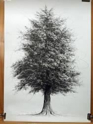 Tree No.2 by sixzero225