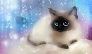 Cute kitten - 2 by Nneila