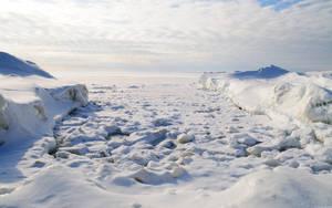 Frozen Shore by hquer