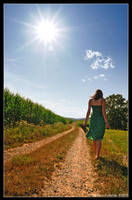 Walking... by hquer