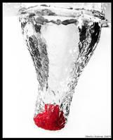 Fluid Dynamics - Rasberry by hquer