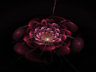 Bloody Rose by ZzFOXzZ