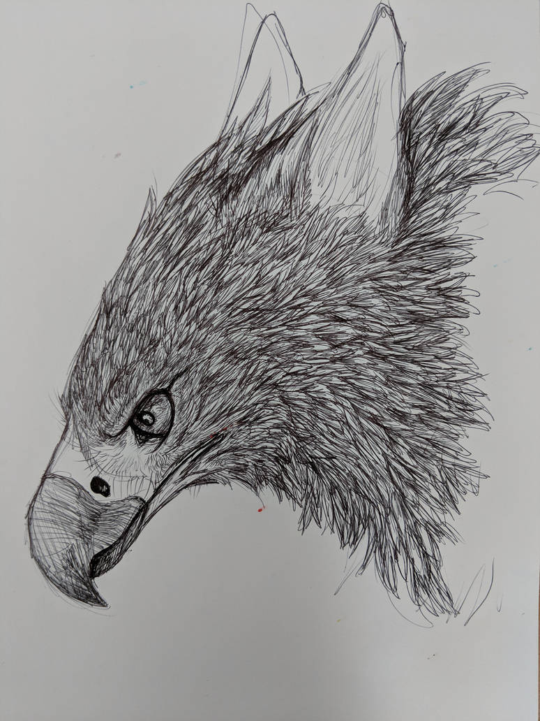 Ballpoint Gryphon by CasualCoyote