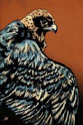 Dark Legacy: Falcon by ChrisJamesScott