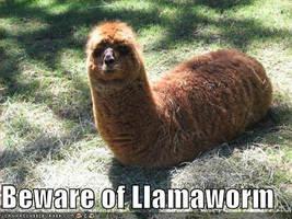 Beware by Unicorns-And-Llamas