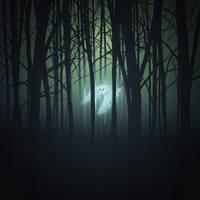 Spiritanimal by Amarbiter
