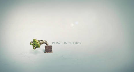 Prince in the box by wuhubuhu