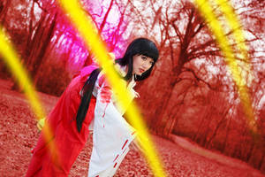 Kikyo Gets Attacked by Inuyasha Cosplay by firecloak