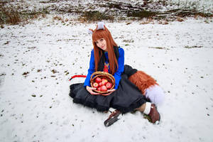 Holo and Basket of Apples, Spice and Wolf Cosplay by firecloak