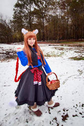 Holo with Basket of Apples, Spice and Wolf Cosplay by firecloak