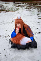 Holo and her Tail, Spice and Wolf Cosplay by firecloak