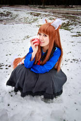 Holo in the Snow, Spice and Wolf Cosplay by firecloak