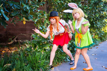 Nami and Carrot Can't Find Sanji, One Piece by firecloak