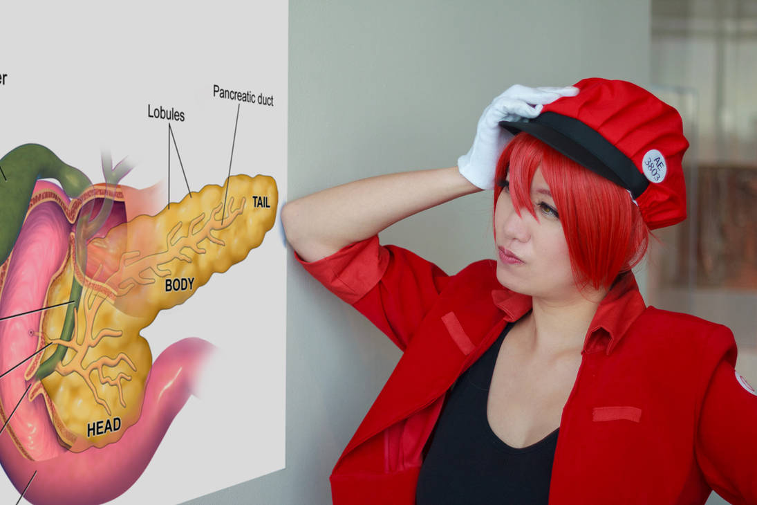 Red Blood Cell is Lost [Cells at Work Cosplay] by firecloak
