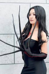 Lust Fullmetal Alchemist Cosplay by firecloak