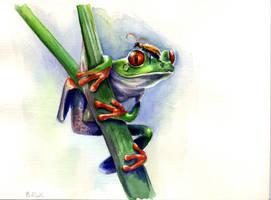 frog by Dianna-Varney
