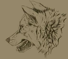 fur study by SekiiRei