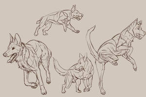 draw-over studies by SekiiRei