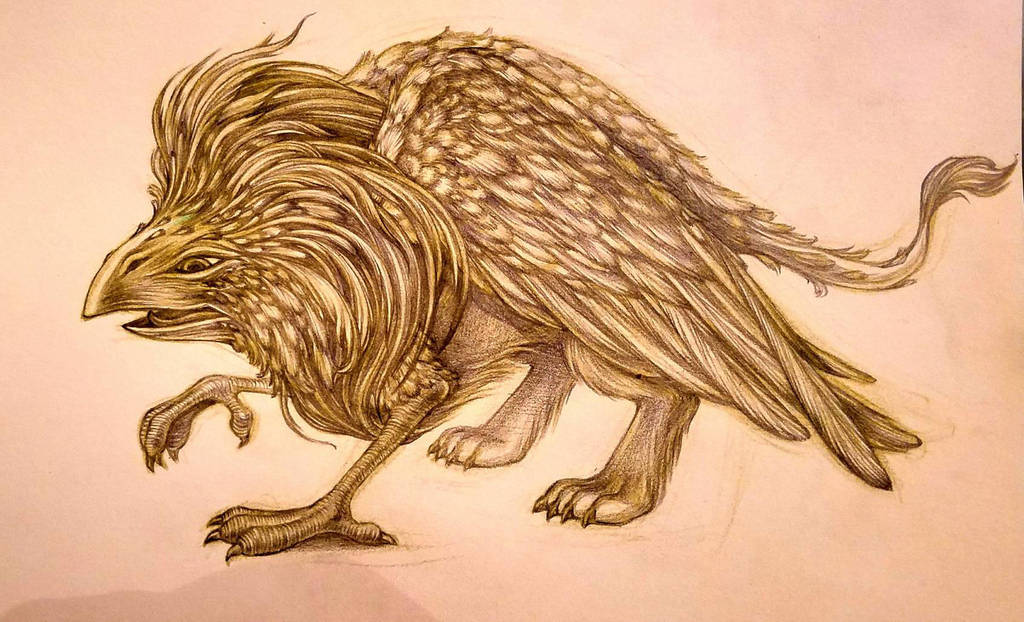 Griffin character design sketch by snuapril01